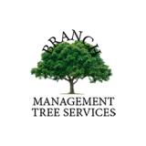 Branch Management Tree Services, Sudbury, Suffolk, Essex, Norfolk